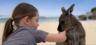 There's Nothing Like Australia 2012