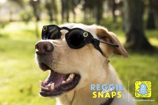 Reggie Does Snaps